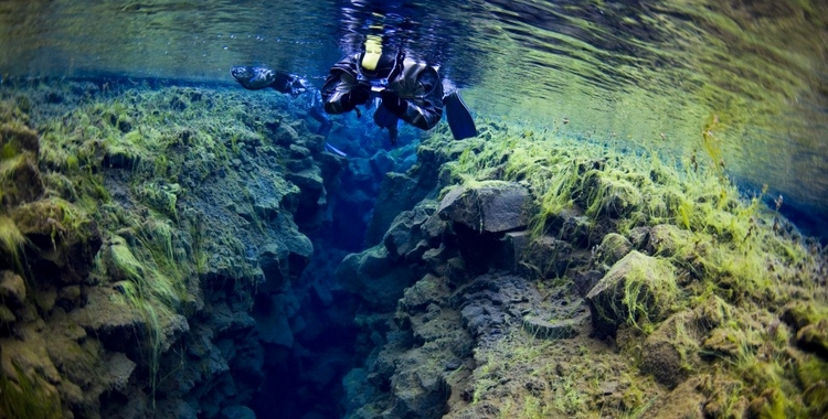 plongée snorkeling islande silfra