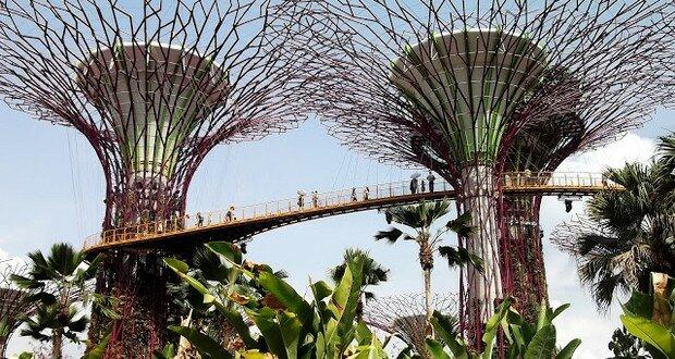 Top 10 des trucs à faire à Singapour